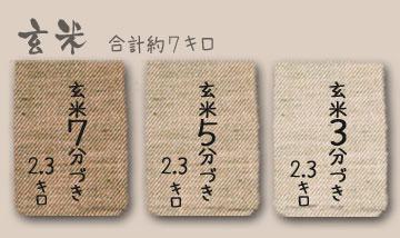 鈴木さんの無農薬米ササニシキ